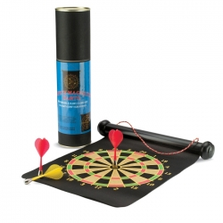 2 in 1 darts set