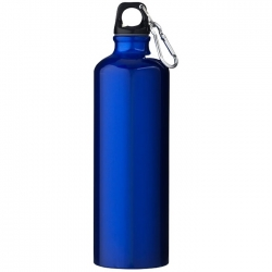Bottle with carabiner