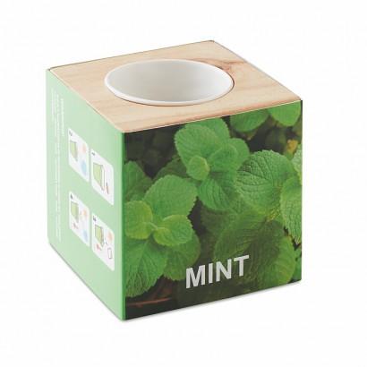 Herb pot wood