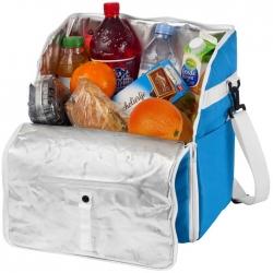 Cooler backpack / tote